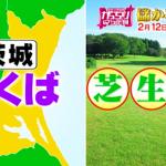 がっちりマンデー!!しばグリーン?茨城県つくば市は芝生の街!?「同業者が集まる、儲かる◯◯の街」